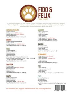 Fido & Felix Recipes (Qty of 1) Essential Oils Dogs, Essential Oil Uses, Essential Oil Diffuser, Essential Ouls, Young Living Oils, Young Living Essential Oils, Perfume Recipes, Oils For Dogs, Essential Oil Perfume