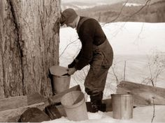 Frank H. Shurtleff putting the cover on the bucket after tapping sugar maple tree for gathering sap to make syrup. The Shurtleff farm has about 400 acres and was originally purchased by grandfather in He raises sheep, cows, cuts lumber and has been m Tapping Maple Trees, Art Of Manliness, How To Make Pancakes, Sugaring, Getting Hungry, Maple Syrup, Good To Know, Vermont, Maple Sugar