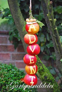 Heute mal was Farbenfrohes für Euren Garten! Äpfel für die lieben Amseln sind ja nichts Neues, aufgereihte Äpfel wahrscheinlich auch nicht ...