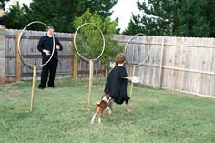 Harry Potter Birthday Party quidditch game i could make this from hula hoops Harry Potter Quidditch Game, Harry Potter Halloween, Harry Potter Decor, Harry Potter Birthday, Harry Potter Hogwarts, Birthday Games, 11th Birthday, Birthday Ideas, Birthday Parties
