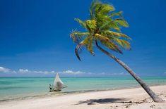 Praia do Patacho, São Miguel dos Milagres – Alagoas