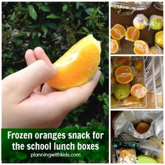 Frozen orange segments for school lunch! A great way to pack a healthy fruit, low time commitment in the morning since they are already cut and wrapped and an added bonus, the frozen orange helps keep the rest of the lunch cold! Snacks For School Lunches, Cold Lunches, Kids Lunch For School, Vegan Lunches, Lunch Snacks, Toddler Food, Toddler Meals, Kids Meals, Healthy Fruits