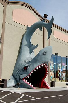 Jaws, Pigeon Forge, Tennessee. I love this store soo much! If you are going to Tennessee, you have to go here! It is a must!!(: