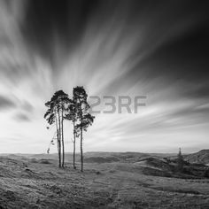 Early morning in a Carpathian valley with beautiful stormy clouds. Monochrome colors