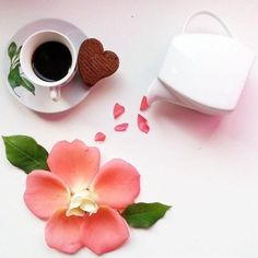 Petals of praise! So lovely, thank you sweet Becky. Coffee Vs Tea, Sweet Coffee, Coffee Is Life, I Love Coffee, Coffee Cafe, Coffee Break, Morning Coffee, Coffee Shop, Love Cafe
