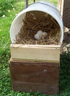 By placing a 4-inch tall board across the front and making sure it squares with the bottom edge of the bucket, the nest is steadied so it doesn't roll when a hen tries to enter.