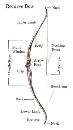 Recurve bow (reference and terminology) Very cool! :) Good to know if I ever have a story with an archer.
