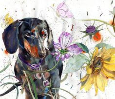dasa by Travis Bruce Black Vintage Dachshund, Arte Dachshund, Dachshund Love, Daschund, Watercolor Artists, Watercolor Animals, Cute Puppy Photos, Weenie Dogs, Dog Paintings