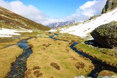 El río Carrión nos pinta unos paisajes paradisíacos cuando todavía está muy cerca de la cuna de su nacimiento en la laguna de fuentes carrionas que se encuentra en el parque natural fuentes carrionas y fuentes cobre, montaña palentina.