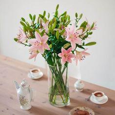 Gib jedem Tag die Chance, der schönste deines Lebens zu werden - nichts leichter als das, mit diesem Gutschein von BLOOMY DAYS für ein luxuriöses Bouquet, exklusiv für IMPRESSIONEN.