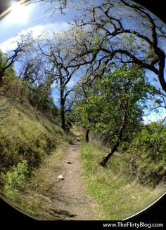 The Flirty Blog: April Photo Adventure: Hiking and bouldering up to the top of Fremont Peak State Park in San Juan Bautista, CA.