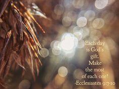 Seize life! Ecclesiastes 9:7-10