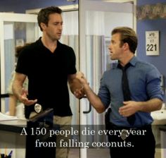 #H50 Danno trying to explain why he hates Hawaii  A. 150 people die every year from falling coconuts