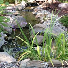 Put's Ponds & Gardens, serving Wayne, Oakland, Macomb or St. Clair Counties of Michigan (MI) http://www.putsponds.com/disappearing-pondless-waterfalls.html