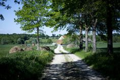 A Return to Rural France, and to Childhood Memories - NYTimes.com