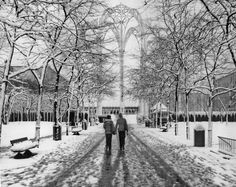 Seattle City Center in the snow- this is strange since seattle rarely gets snow..