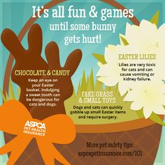 Keep an eye out! #Easter #Pets