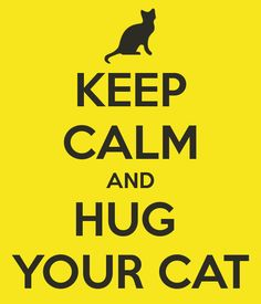 KEEP CALM AND HUG  YOUR CAT  http://www.keepcalm-o-matic.co.uk/#create