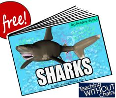 Perfect for Sharks Unit Studies or Ocean Themes! A fun part of homeschool or just-for-fun science reading! An easy reader on about a or grade easy reading level! Leveled Readers, Emergent Readers, Easy Reader, Ocean Themes, Reading Levels, Summer School, Ocean Life, Sharks, Science