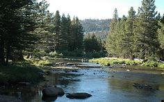 Camping Yosemite National Park