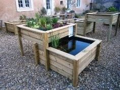 There are several advantages of using aquaponics for your organic gardening. Not only is it easier than a traditional garden, but it is movable and produces protien to consume too. Aquaponics Greenhouse, Aquaponics Plants, Aquaponics System, Growing Vegetables, Growing Plants, Aquaponique Diy, Fish Farming, Vertical Farming, Water Plants