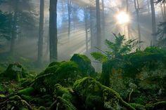 Beautiful Landscape Photography by Vincent Favre
