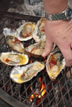 How To Tuesday :: How to Shuck and Grill Oysters - Country Cleaver Bbq Oysters, Smoked Oysters, Grilled Oysters, Salmon And Asparagus, Baked Salmon, Shellfish Recipes, Seafood Recipes, Sushi Recipes, Asian Recipes