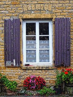 Countryside window and flowers, Rhone, France