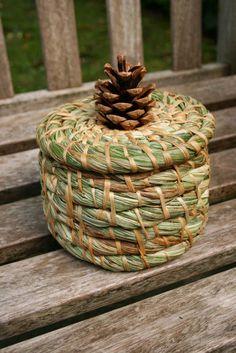 Making a basic coiled basket Rope Basket, Basket Weaving, Pine Needle Crafts, Willow Weaving, Pine Needle Baskets, Newspaper Crafts, Ideias Diy, Pine Needles, Weaving Art