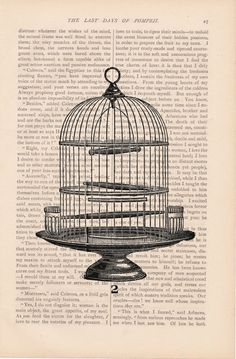 dictionary bird print BIRD CAGE birdcage no. 2 recycled book - vintage art book page print