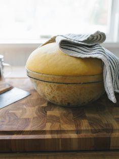 No-Knead Pumpkin Spice Sourdough Bagels | theclevercarrot.com