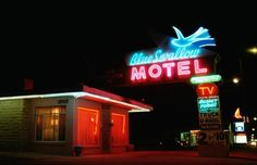 The Grace of the Blue Swallow :: Travelling the length of Route from Grant's Park Chicago all the way to the pier @ Santa Monica, we met many of the Old Road's old legends. In Tucumcari, New Mexico, it was Lillian Redmond of the iconic Blue Swallow Motel. Blue Swallow Motel, Grant Park, Travelogue, Route 66, Santa Monica, New Mexico, Travelling, Travel Destinations, Legends
