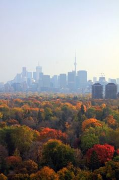 Autumn in Toronto, Ontario, Canada Ontario, O Canada, Canada Travel, The Places Youll Go, Places To See, Downtown Toronto, Toronto Skyline, Vancouver, Monuments