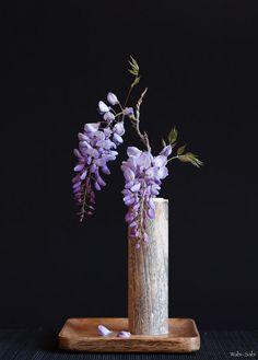 Wisteria Sinensis By Wabi-Sabi Ikebana Arrangements Ikebana, Ikebana Flower Arrangement, Beautiful Flower Arrangements, Flower Vases, Flower Art, Floral Arrangements, Cactus Flower, Arte Floral, Deco Floral