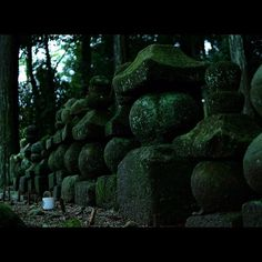 【my_favorites0626】さんのInstagramをピンしています。 《☆嵐の前…♪♪☆ ここは、ご近所の神社… 静寂な森の中に降り注ぐ雨と それを見守る神々 #神社 #Shrine #苔 #moss #石塔 #Stonepagoda #自然 #nature #雨の日 #rainyday #icu_nature #japan_focus #nature_special_ #special_beginners_ #cools_japan #jp_views2nd #phos_japan #lovers_amazing_group #wp_photo_club #japan_of_insta #bestjapanpics #ファインダー越しの私の世界 #写真好きな人と繋がりたい #forest_masters #divine_forest #forest_gallery #森 #forest #白山神社》