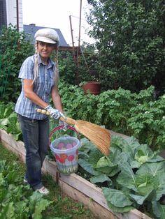 Plants, Garden, Farm, Agri, Farm Gardens