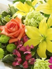 ae UAE's Largest Florist, Zero Delivery Charge, Video of all Orders Sent International Flowers, Cut Flowers, Rose, Plants, Pink, Plant, Roses, Planets