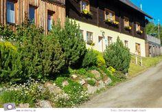 Urlaub Zirbitzkogel in der Steiermark - Wandern mit Kind und Hund | Tonnerhütte Hiking With Kids, Traveling With Children, Recovery, Dog