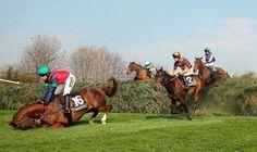 Boycott horse racing.