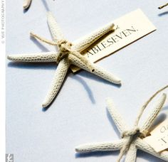 Molly ordered starfish online and fastened seating assignments to them with rough twine. @Cat Cronce