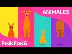 (14) Canguro Boin Boin   Canguro   Animales   PINKFONG Canciones Infantiles - YouTube