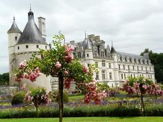 English castle and garden