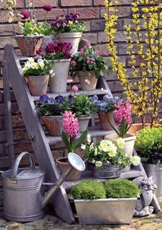 Inspiration Photo - potted flowers are grouped together for greater visual impact.  An old stepstool acts as a plantstand in this pretty vignette.  -LRE