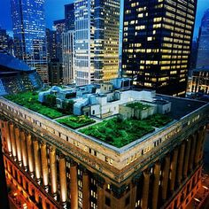 CHICAGO CITYHALL ROOFTOP