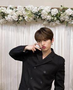 Stray Kids Minho, Lee Know Stray Kids, Lee Min Ho, Fandom, Shinee, South Korean Boy Band, Baby Photos, Instagram Feed, Boy Bands