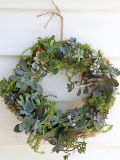 Learn the simple steps to create a succulent wreath from HGTV.