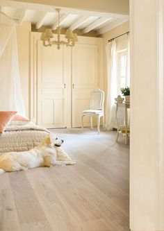 1000 Images About Bedroom Inspiration On Pinterest Laminate Flooring Vinyl Flooring And Planks
