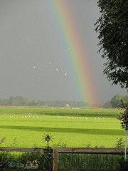 Uitzicht van mijn achtertuin op 17-09-2010 - by Ragini Werner