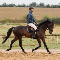 Man On Horse, Dressage Horses, Black Horses, How To Look Handsome, Boy Poses, Horse Care, Horse Photography, Horse Riding, Beautiful Horses