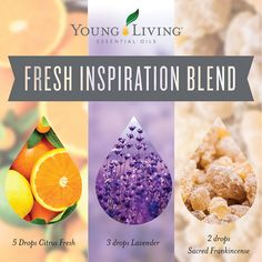 Fresh Inspiration Diffuser Blend: 5 drops Citrus Fresh essential oil blend, 3 drops lavender essential oil, 2 drops sacred frankincense essential oil ~ Click for more blends.